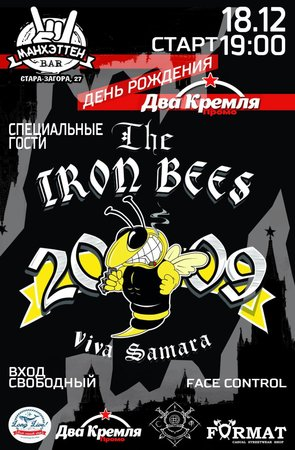 The Iron Bees концерт в Самаре 18 декабря 2015
