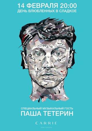 Павел Тетерин концерт в Самаре 14 февраля 2016