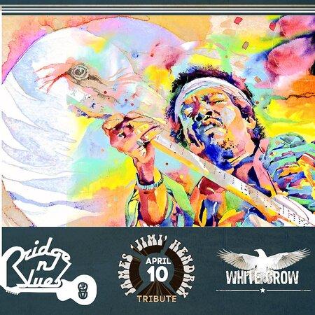 White Crow концерт в Самаре 10 апреля 2016
