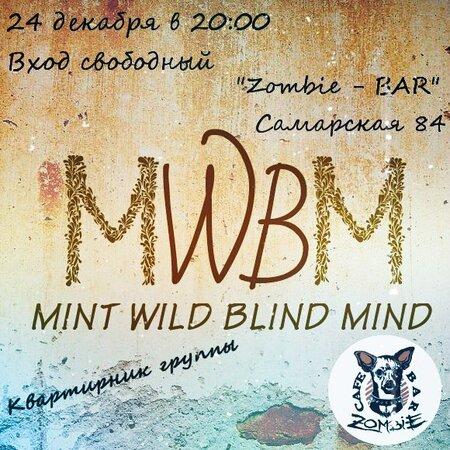 Mint Wild Blind Mind концерт в Самаре 24 декабря 2017
