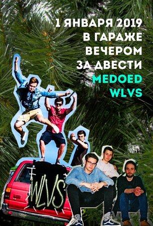 WLVS, Medoed концерт в Самаре 1 января 2019