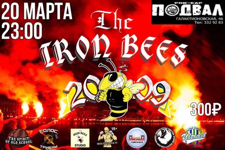 The Iron Bees концерт в Самаре 20 марта 2020